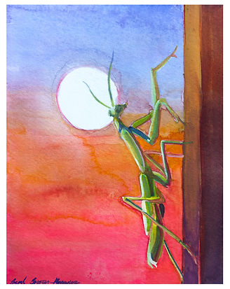 Mantis and the moon.jpg