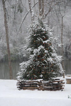 Snowfall at River Park