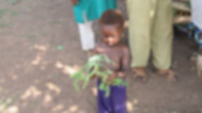 Girl With Moringa.JPG