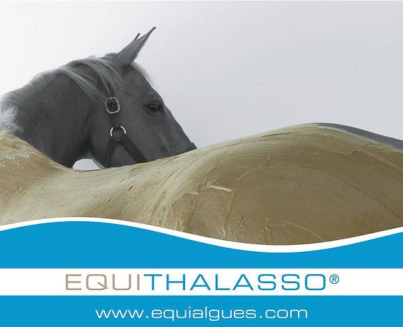 logo_Equithalasso_léger.jpg