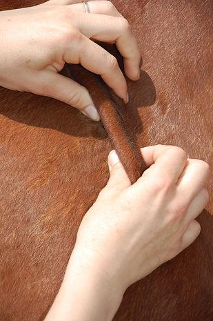 Techniques_massages_et_étirements_078.J
