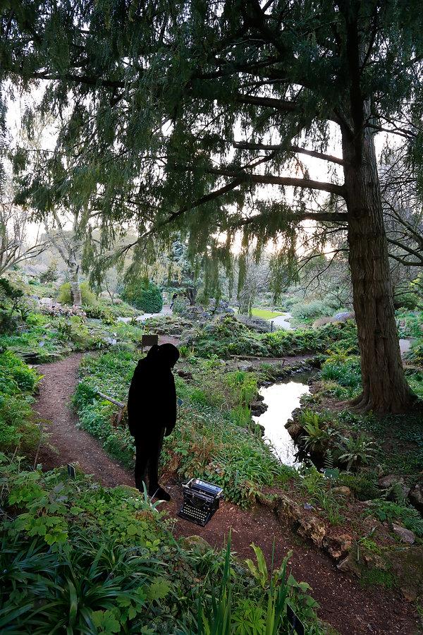6 Jardin alpin (jardin des plantes.jpg