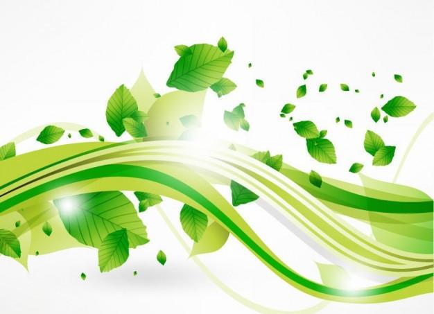 vecteur-feuilles-eco-et-vague-verte_53-10353.jpg