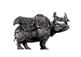 rino without background.png