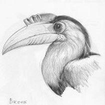 drawing_gallery_img-150x150.jpg