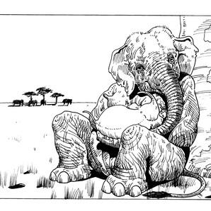 elephant 33.jpg