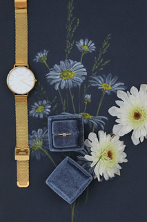 Wildflowers and Wild Diamonds