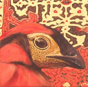 red-bird1.jpg