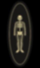 icone de Fred le Squelette