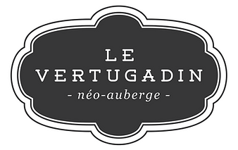 logo Vertugadin