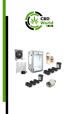 CBD World Growset mittel