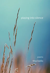 playing_into_silence.jpg
