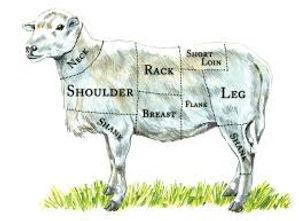 better sheep cuts.jpg
