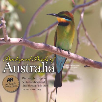 Backyards Birds of Australia