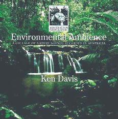Environmental Ambience