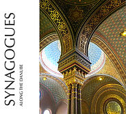 Synagogues Along the Danube_Book Jacket.