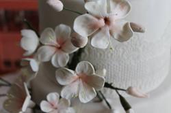 Fleurs_de_cerisiers_en_pâte_d'amande