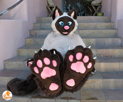 sproutfeets_thefurcollective