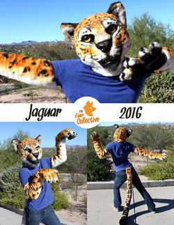 jaguarsized.jpg