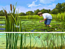 Frog hunting