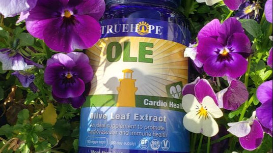 Truehope Olive Leaf Extract and Your IBS Symptoms