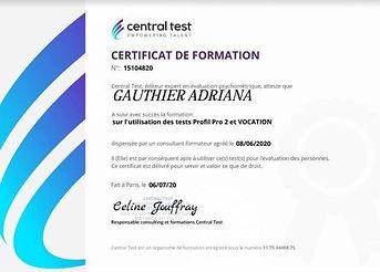 certificatcentraltest.JPG