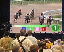 Casino mobile blackjack table Animation DJ Discomobile animateur photobooth miroir québec événement congrès banquets mariage votaton électronique