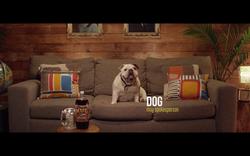 MUG - Commercial