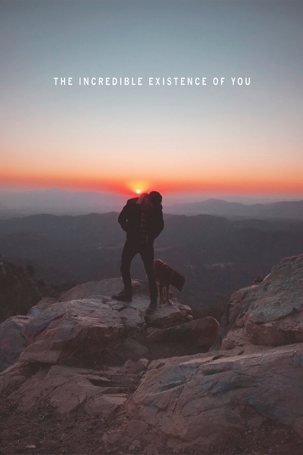 The Incredible Existence of You - Drue G