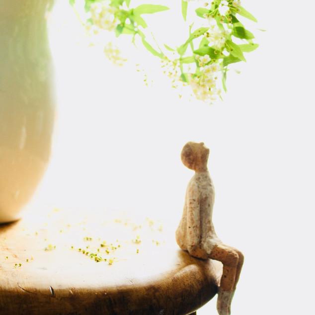 花瓶の花を見上げる