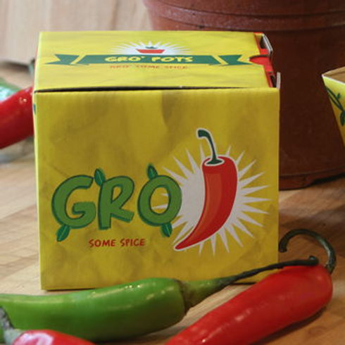 Grow your own chilli gro pot