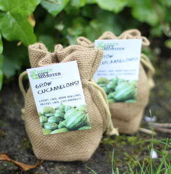 Grow your own mini melons jute bag