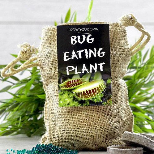 Bug Eating Plant Jute Bag Grow Set