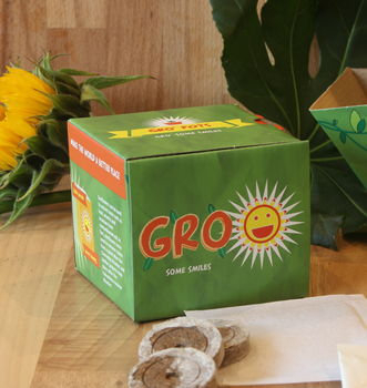 Grow your own sunflowers gro pot