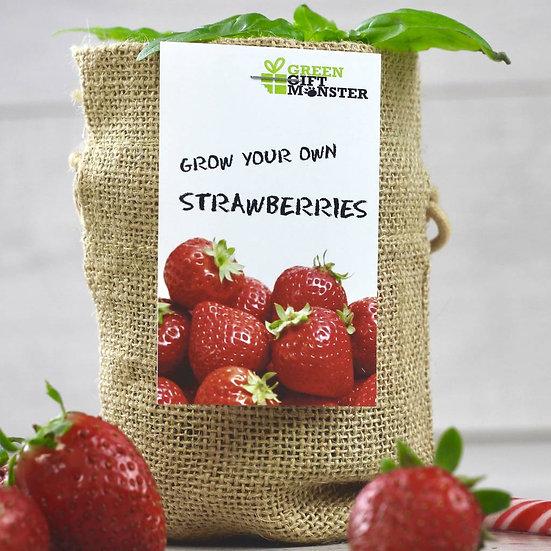 Strawberries Jute Grow Set