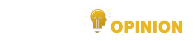 logo entête panel.png