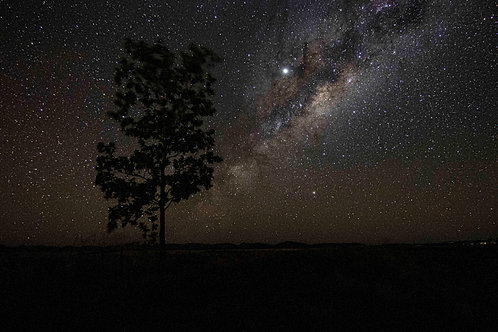 Lone Tree Halls Creek Milkyway