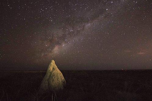 Dampier Creek Termite Mound Milky Way