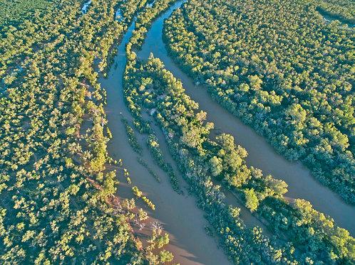 Fitzroy River Wet Season