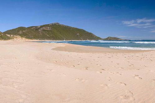 Conspicuous Cliffs Beach