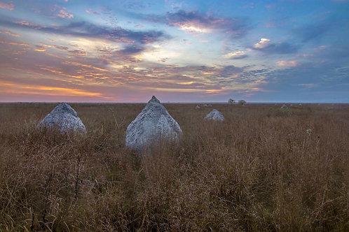 Termite Mounts Sunrise