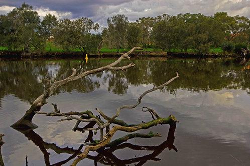 Swan River Guildford