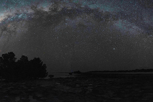 Willie Creek Milky Way