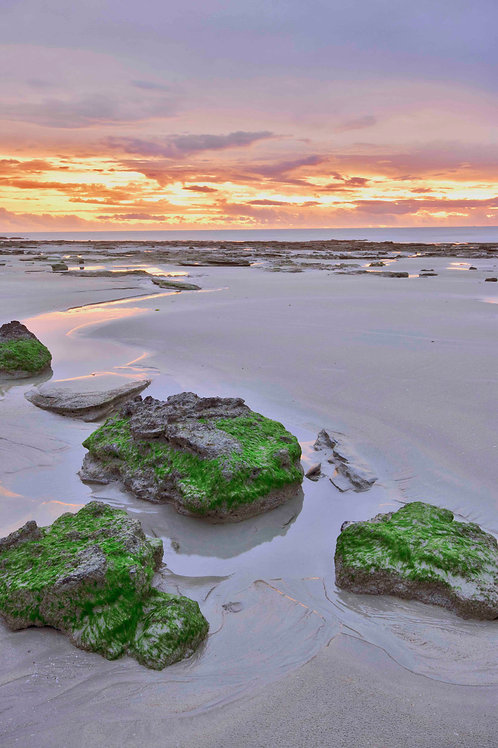 Cable Beach Moss Rocks