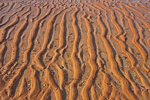 Mud Flats Pattern