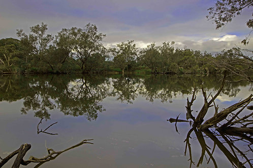 Muarry River Ravernswood