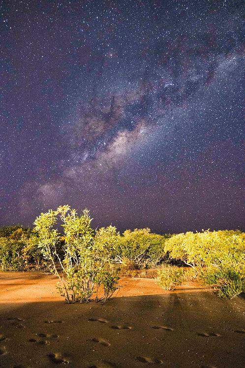 Mangorves Milky Way