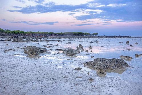Roebuck Bay Mud Flats