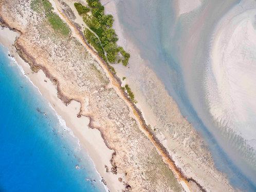 Barrid Creek Low Tide