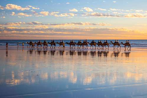 Sunset Camel Cable Beach